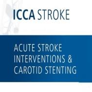 ICCA Stroke 2017