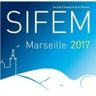 SIFEM 2017
