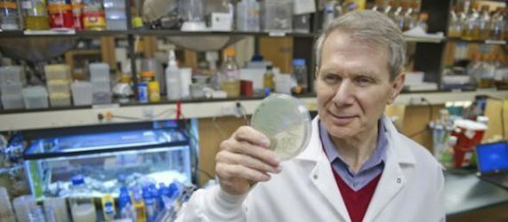 New Treatment Discovery Leads to MRSA Infection Cure