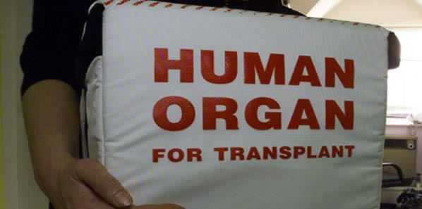 Donor Hearts Being Rejected While Need for Transplants Increase