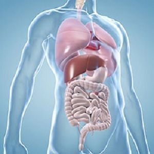Adenomas: rare liver tumours