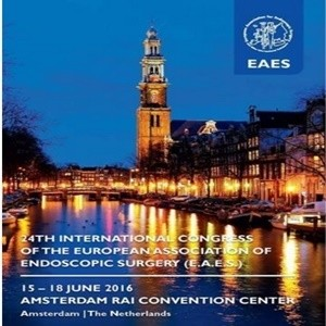 EAES 2016-24th International Congress of the EAES