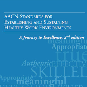 Cover of the American Association of Critical-Care Nurses Standards for Establishing and Sustaining Healthy Work Environments