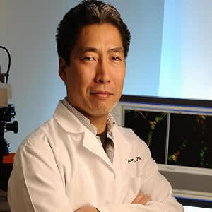 The laboratory of Masanobu Komatsu, Ph.D., studies the regulation of blood vessel growth and remodeling to aid the treatment of cancer and heart disease