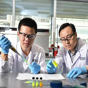 Prof Liu Xiaogang (right) and Dr Chen Qiushui (left) developed perovskite nanocrystals which, when used as a scintillator material in X-ray imaging, reduce the required radiation dose to deliver higher resolution imaging.
